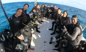 playa-del-carmen-tiburon-toro-saving-our-sharks